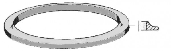 Deckeldichtring 165x200mm