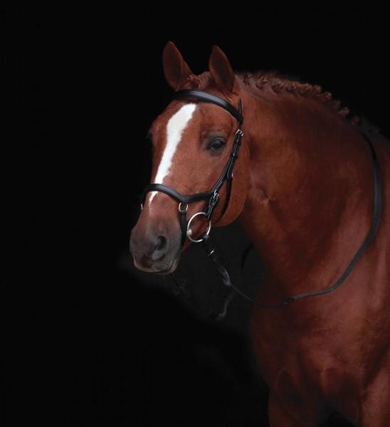 Horseware Rambo Micklem Original Competition