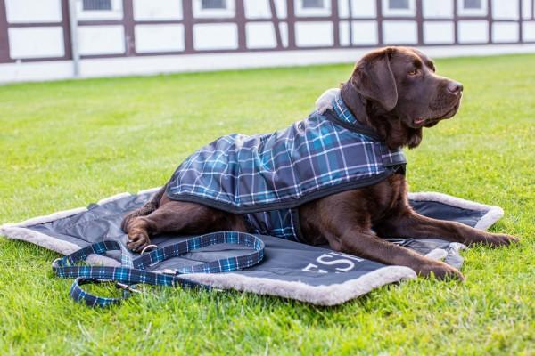 Eskadron Set Hundehalsband und Leine
