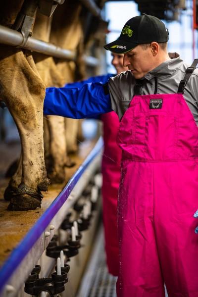 WAHL-Hausmarke MELKER-LATZHOSE wasserdicht, Pink