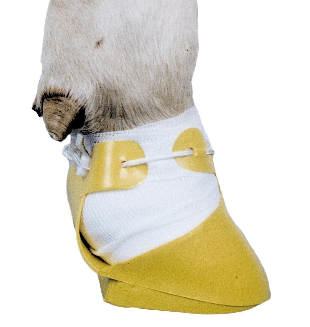 Klauenpflegeschuh  NEU Klauenschuh für Schafe