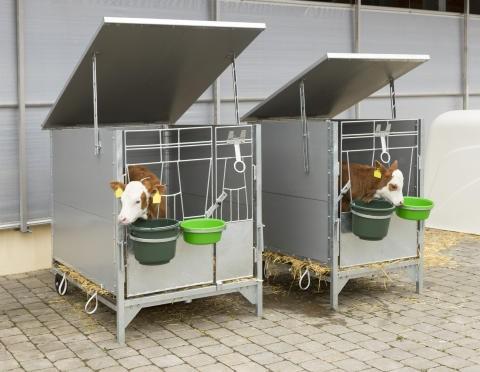 Dach / Überdachung für Kälberbox groß